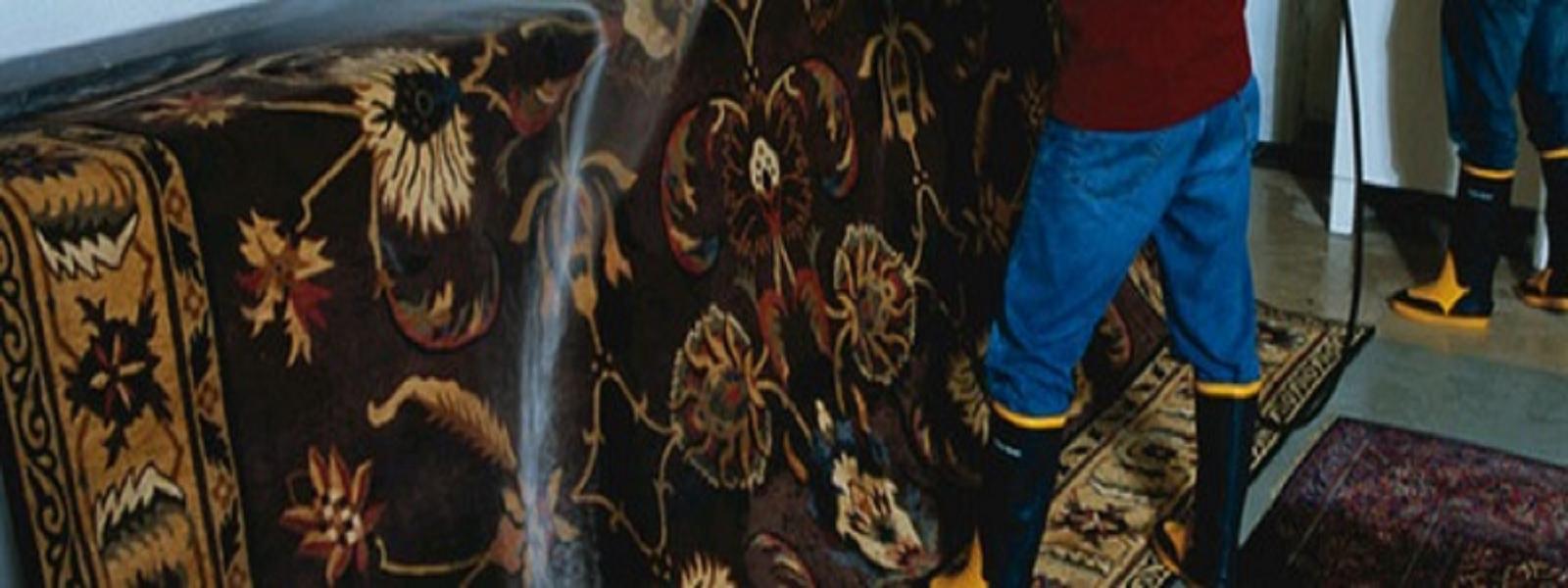 area rug rinsing ct slider